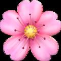 Cherry Blossomemoji