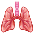 New emojis, Lung emoji, Lung photo, Lungs, Respiratory Health
