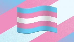 Transgender Flag, Pride Flag, Transgender Emoji