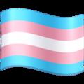 Transgender flag, Transgender