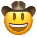 cowboy emoji, face with cowboy hat emoji
