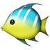Tropical fish emoji, fish emoji, tropical fish, blue and green fish
