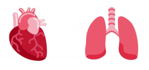 Lung emoji, Heart emoji, Twemoji 13.0, Lung and Heart emoji