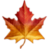 Maple Leaf emoji, Maple Leaf, Apple version of the Maple Leaf emoji