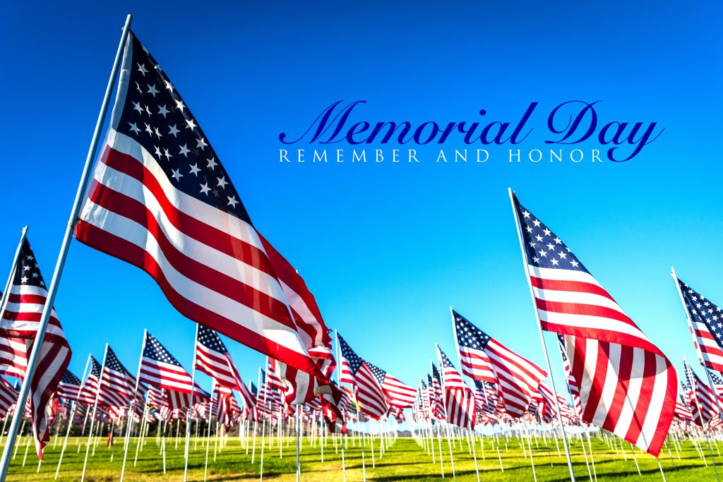 A very large display of American flags on a national holiday such as memorial day or veterans day