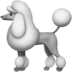 🐩 poodle Emoji on Apple Platform