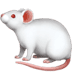 🐁 mouse Emoji on Apple Platform