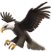 🦅 eagle Emoji on Apple Platform