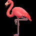 🦩 flamingo Emoji on Apple Platform
