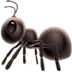🐜 ant Emoji on Apple Platform