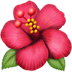 🌺 hibiscus Emoji on Apple Platform
