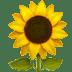 🌻 Bunga Matahari Emoji pada Platform Apple