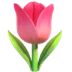 🌷 tulip Emoji on Apple Platform