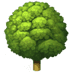 🌳 deciduous tree Emoji on Apple Platform