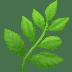 🌿 herb Emoji on Apple Platform