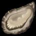 🦪 oyster Emoji on Apple Platform