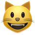😺 grinning cat Emoji on Apple Platform