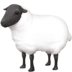 🐑 ewe Emoji on Facebook Platform