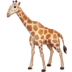 🦒 Giraffe Emoji on Facebook Platform
