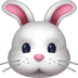 🐰 rabbit face Emoji on Facebook Platform
