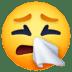 🤧 Sneezing Face Emoji on Facebook Platform