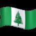 🇳🇫 flag: Norfolk Island Emoji on Facebook Platform