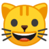 🐱 cat face Emoji on Google Platform