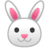 🐰 rabbit face Emoji on Google Platform