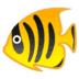 🐠 tropical fish Emoji on Google Platform