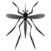 🦟 Mosquito Emoji on Google Platform