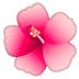 🌺 hibiscus Emoji on Google Platform
