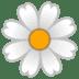 🌼 blossom Emoji on Google Platform