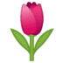 🌷 tulip Emoji on Google Platform