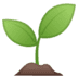 🌱 seedling Emoji on Google Platform