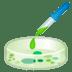 🧫 petri dish Emoji on Google Platform