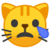 😿 Crying Cat Emoji on Google Platform