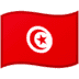 🇹🇳 flag: Tunisia Emoji on Google Platform