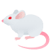 🐁 mouse Emoji on Joypixels Platform
