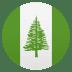🇳🇫 flag: Norfolk Island Emoji on Joypixels Platform