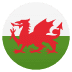 🏴󠁧󠁢󠁷󠁬󠁳󠁿 flag: Wales Emoji on Joypixels Platform