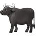 🐃 water buffalo Emoji on Samsung Platform