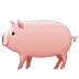 🐖 pig Emoji on Samsung Platform