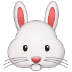 🐰 rabbit face Emoji on Samsung Platform