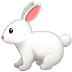 🐇 rabbit Emoji on Samsung Platform