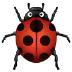 🐞 Lady Beetle Emoji on Samsung Platform