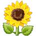 🌻 Bunga Matahari Emoji pada Platform Samsung