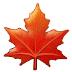 🍁 maple leaf Emoji on Samsung Platform