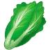 🥬 leafy green Emoji on Samsung Platform