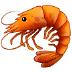 🦐 shrimp Emoji on Samsung Platform