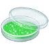 🧫 petri dish Emoji on Samsung Platform